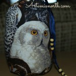 Owl Lens Bag
